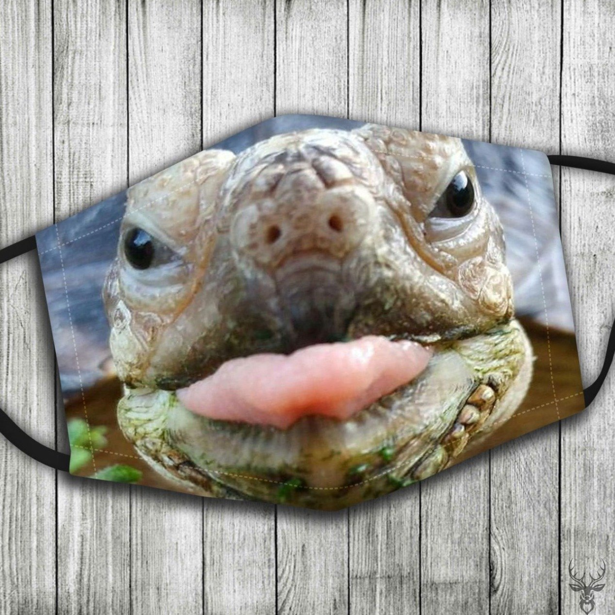 Turtle Face Mask 2